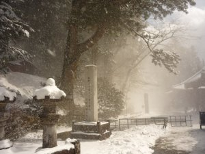 Purity: Nikko in the snow